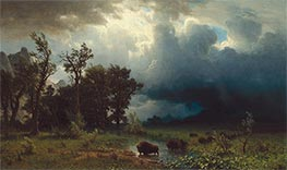 Bierstadt | Buffalo Trail: The Impending Storm, 1869 | Giclée Canvas Print