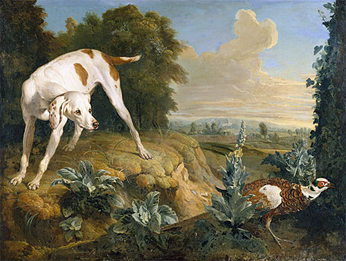 Dog Stopped in Front of a Pheasant, undated | Alexandre-François Desportes | Painting Reproduction