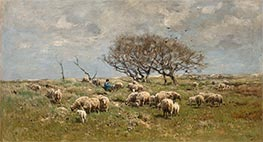 Anton Mauve   A Shepherd with Sheep in a Field, Undated   Giclée Canvas Print