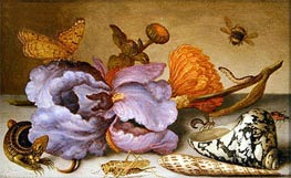 van der Ast | Still Life Depicting Flowers, Shells and Insects | Giclée Canvas Print