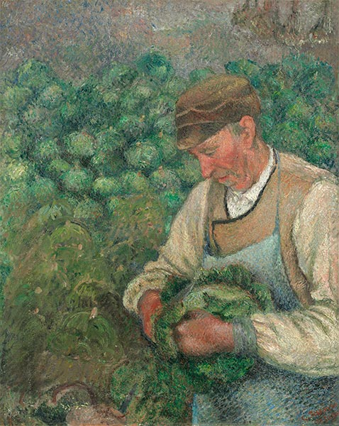 The Gardener - Old Peasant with Cabbage, c.1883/95 | Pissarro | Giclée Canvas Print