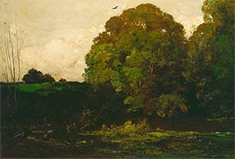 Charles-Francois Daubigny | A Pond in the Morvan, 1869 | Giclée Canvas Print