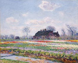 Monet | Tulip Fields at Sassenheim near Leiden, 1886 | Giclée Canvas Print