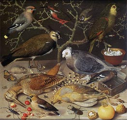 Georg Flegel | Still Life of Birds and Insects, 1637 | Giclée Canvas Print