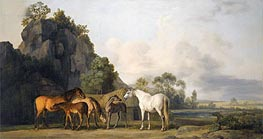 George Stubbs | Brood Mares and Foals | Giclée Canvas Print