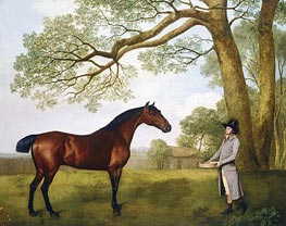 George Stubbs | John Gascoigne with a Bay Horse, 1791 | Giclée Canvas Print