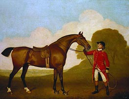 George Stubbs | A Bay Horse with a Groom, 1791 | Giclée Canvas Print