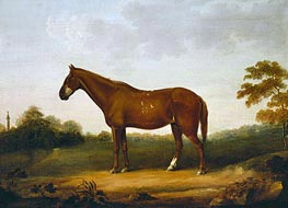 George Stubbs | A Chestnut Cob in the Park at Gibside, c.1800/50 | Giclée Canvas Print