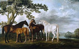 George Stubbs | Mares and Foals in a River Landscape, c.1763/68 | Giclée Canvas Print