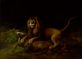 George Stubbs | A Lion Attacking a Stag, c.1765/66 | Giclée Canvas Print