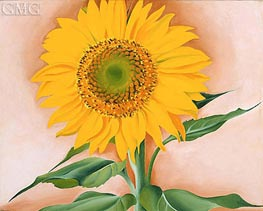 O'Keeffe | A Sunflower from Maggie, 1937 | Giclée Canvas Print