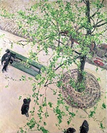Caillebotte   Boulevard seen from Above, 1880   Giclée Canvas Print