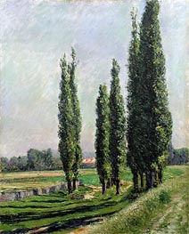 Caillebotte | Poplars on the Riverbank at Argenteuil | Giclée Canvas Print