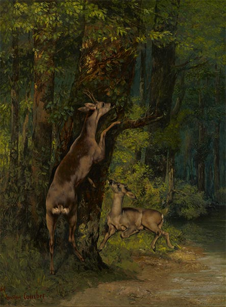 Deer in the Forest, 1868 | Courbet | Giclée Canvas Print