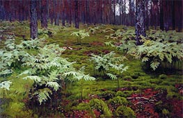 Isaac Levitan | Fern in Wood | Giclée Canvas Print