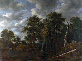 Ruisdael | A Pool Surrounded by Trees | Giclée Canvas Print