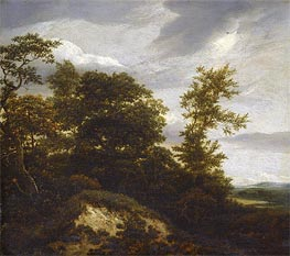 Ruisdael | A Wooded Dune Landscape | Giclée Canvas Print