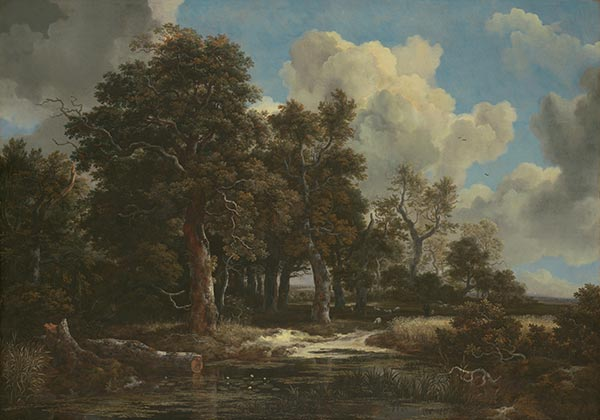 Edge of a Forest with a Grainfield, c.1656 | Ruisdael | Giclée Canvas Print