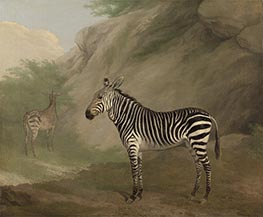 Jacques-Laurent Agasse | Zebra, 1803 | Giclée Canvas Print