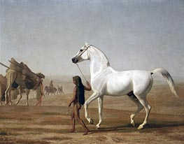 Jacques-Laurent Agasse | The Wellesley Grey Arabian Led through the Desert | Giclée Canvas Print