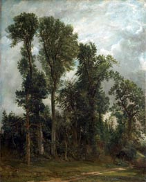 Constable | Trees at Hampstead | Giclée Canvas Print