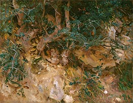 Sargent | Valdemosa, Majorca: Thistles and Herbage on a Hillside | Giclée Canvas Print