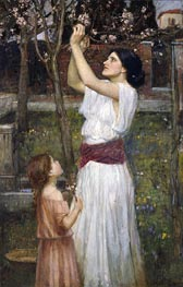 Waterhouse | Gathering Almond Blossoms, 1916 | Giclée Canvas Print