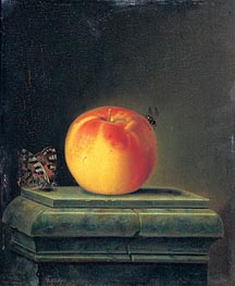 Justus Juncker | Still Life with Apple and Insects, 1765 | Giclée Canvas Print