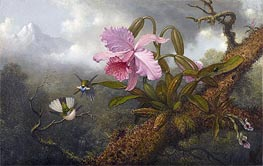 Martin Johnson Heade | Cattleya Orchid, Two Hummingbirds and a Beetle, c.1875/90 | Giclée Canvas Print
