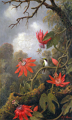Hummingbird and Passionflowers, c.1875/85 | Martin Johnson Heade | Giclée Canvas Print