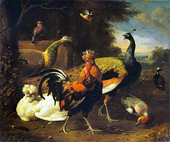 A Cockerel with other Birds, c.1668/95 | Melchior d'Hondecoeter | Giclée Canvas Print