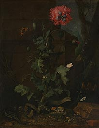 van Schrieck | Still Life with Poppy, Insects and Reptiles, c.1670 | Giclée Canvas Print