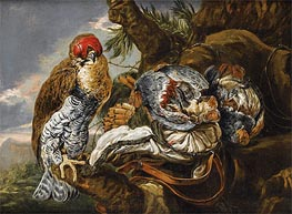 Pieter Boel | A Hawk Bearing Trophy Hunting, Undated | Giclée Canvas Print
