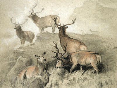 Some of the Best Harts in the Forest, 1860 | Landseer | Giclée Paper Print