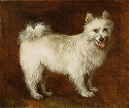 Gainsborough | Spitz Dog, c.1760/70 | Giclée Canvas Print