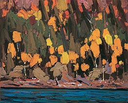 Tom Thomson | Birches and Cedar, Fall, 1915 | Giclée Canvas Print