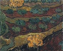 Vincent van Gogh | Olive Trees against a Slope of a Hill | Giclée Canvas Print
