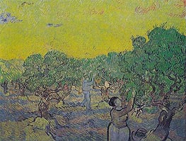 Vincent van Gogh | Olive Grove with Picking Figures | Giclée Canvas Print