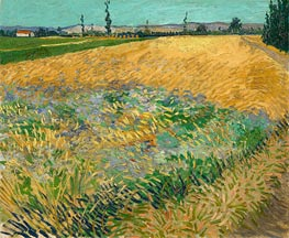 Vincent van Gogh | Wheat Field with the Alpilles Foothills, 1888 | Giclée Canvas Print