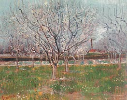 Vincent van Gogh | Orchard in Blossom (Plum Trees) | Giclée Canvas Print