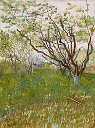 Vincent van Gogh | Orchard in Blossom | Giclée Canvas Print