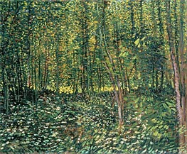 Vincent van Gogh | Trees and Undergrowth | Giclée Canvas Print