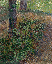 Vincent van Gogh | Undergrowth, 1887 | Giclée Canvas Print