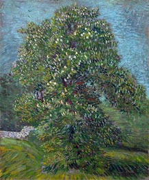 Vincent van Gogh | Chestnut Tree in Blossom, 1887 | Giclée Canvas Print