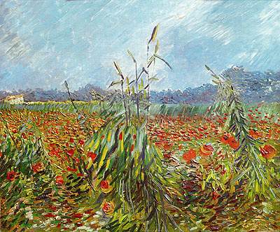 Corn Fields and Poppies, 1888 | Vincent van Gogh | Giclée Canvas Print
