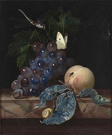 Willem van Aelst | A Still Life with Grapes, Peach, Cabbage-White and Dragon-Fly | Giclée Paper Print