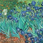 Vincent van Gogh Giclée Art Prints Gallery